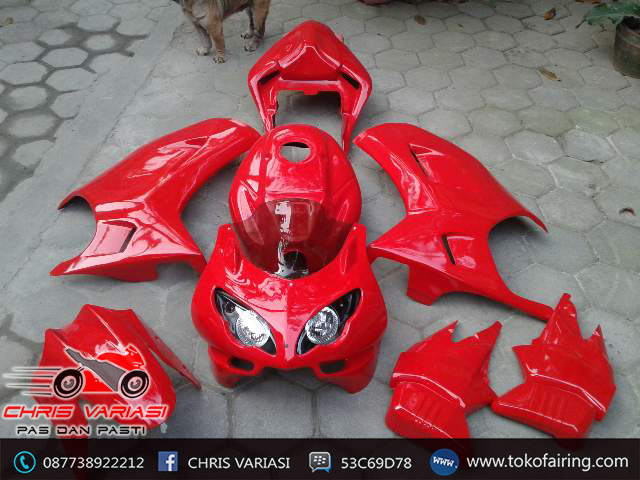 Full Fairing Ducaty Byson Set